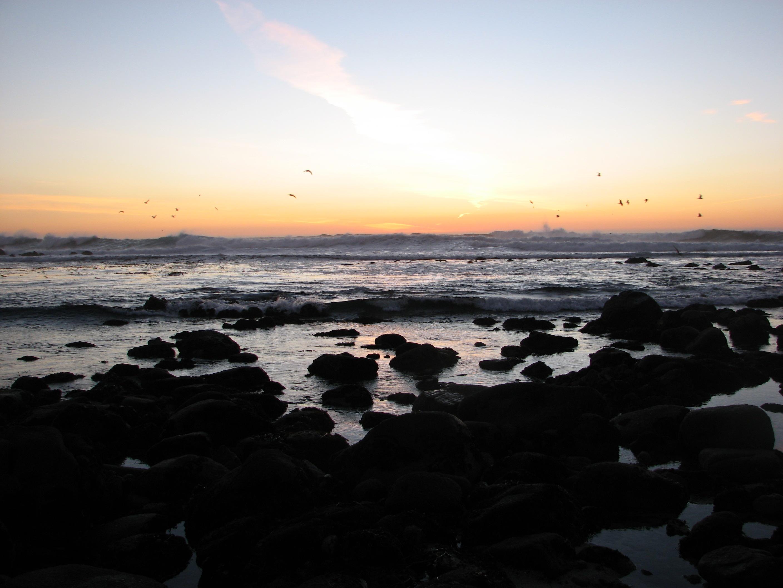 Ocean Sunset.jpg
