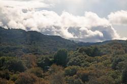 Carmel Valley.jpg