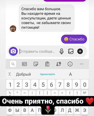 WhatsApp Image 2021-03-06 at 00.32.00.jp