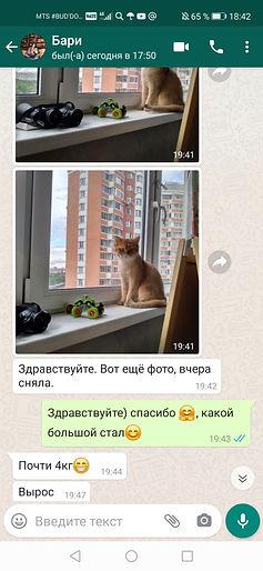 WhatsApp Image 2020-06-03 at 18.43.17.jp