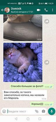 WhatsApp Image 2020-06-03 at 18.30.00 (1