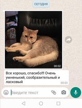 WhatsApp Image 2020-06-03 at 18.35.49.jp