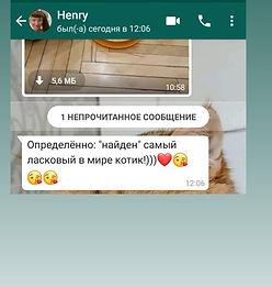WhatsApp Image 2021-03-06 at 00.37.16.jp