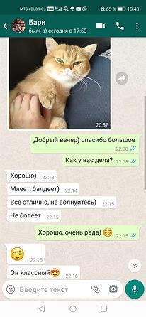 WhatsApp Image 2020-06-03 at 18.43.17 (1
