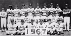 Santa Barbara Dodgers - 1967