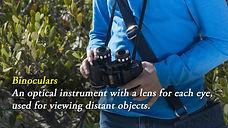 Vocab_Binoculars.jpg