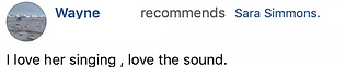 Wayne Recommends.png