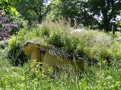 love-shack's summer's roof