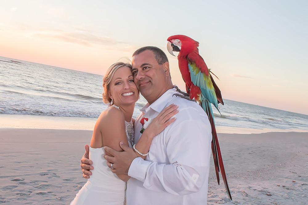 Faith and Michael's Beach Wedding Elopement