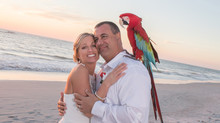 Faith and Michael's Beach Wedding Elopement
