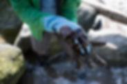 Guanti di gomma ricoperti di olio