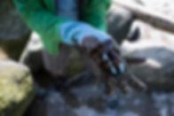 Oil Covered Rubber Gloves