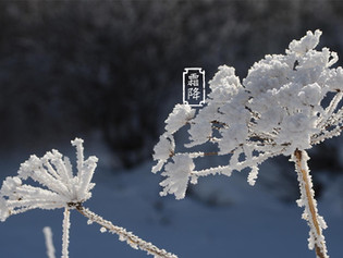 Health Preservation Tips for Today | Frost Descent