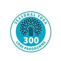 300hr logo.png