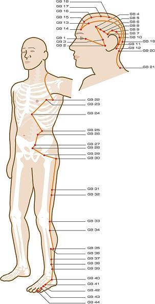 spring yoga, gallbladder meridian