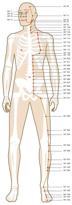 late summer yoga spleen meridian