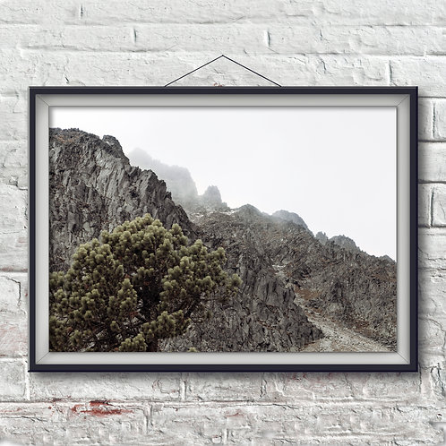 El Nevado - Photo Print