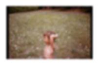 tumblr_ow6jamAPnc1vqf06uo1_1280.jpg