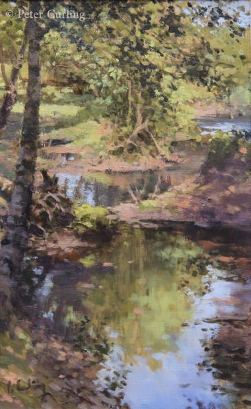 A Stream in the Dordogne
