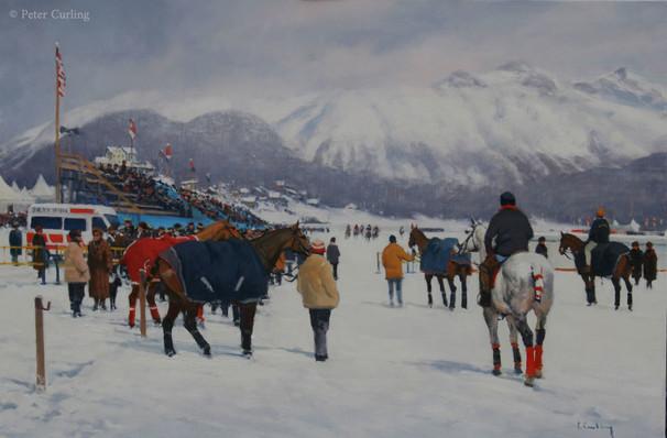 Ponies waiting, St Moritz