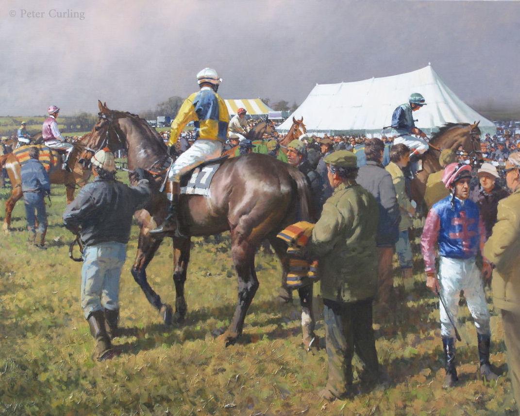 The Paddock at  Knockanard