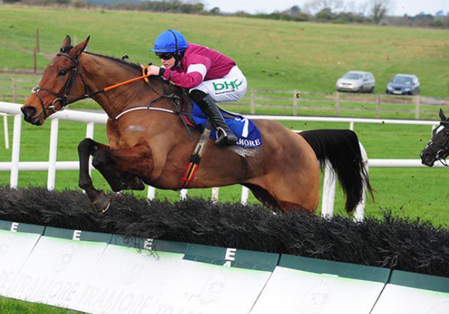 Mormon winning at Tramore on New Year's Day