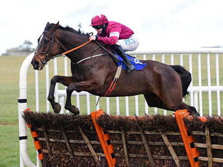 Viscount victorious back over jumps