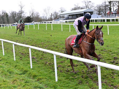 Journey another exciting prospect for de Bromhead