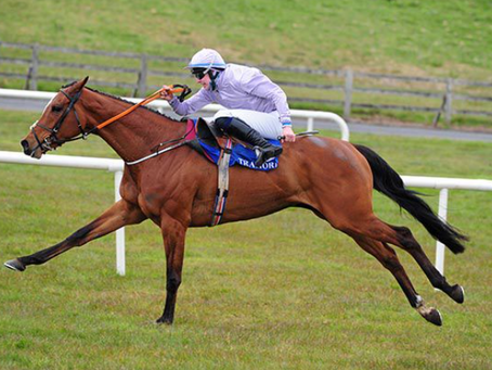 Money rounds off memorable day for de Bromhead