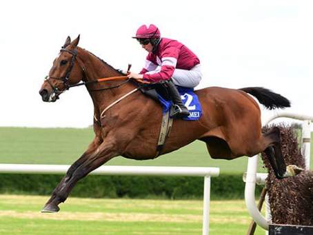 O'Connor gets tactics right on Arvico Bleu
