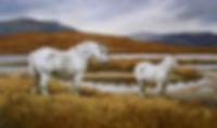 Highland-Ponies_purchase.jpg
