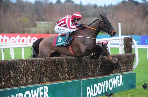 Paloma Blue winning the Paddy Power Beginner's Chase at Leopardstown