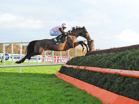 January Jets puts his jumping to good use