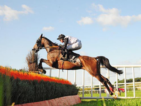 Not Available brings de Bromhead's Friday score to four