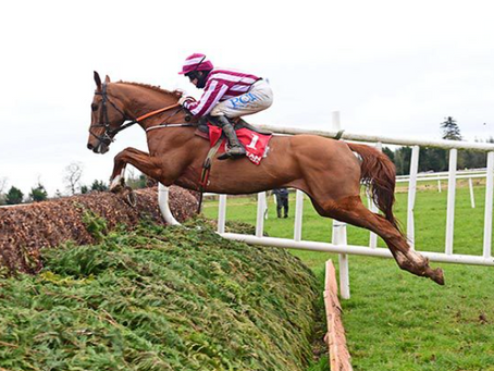 'That was fun' as Score exhibits jumping prowess