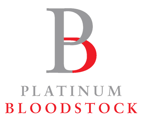 Platinum BS.png