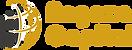 logo angaza.png