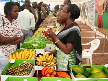 Creating an agri-business hub: an investor's journey in Rwanda