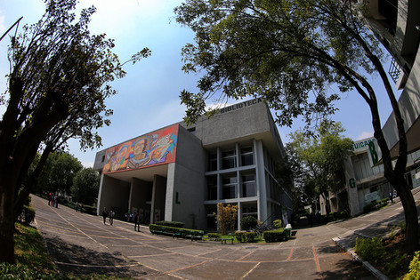 Biblioteca.  Foto: Archivo UAM-DCS / Alejandro Juárez Gallardo.