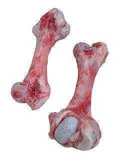 Femur-Bone.jpg