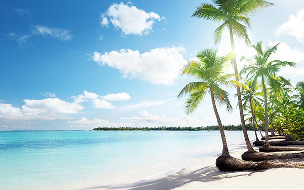 tropical-sand-beach-palms.jpg