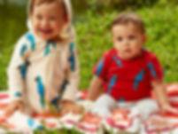 dois bebes sentados em cobertor sobre a grama.