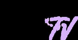 Diversify TV logo.