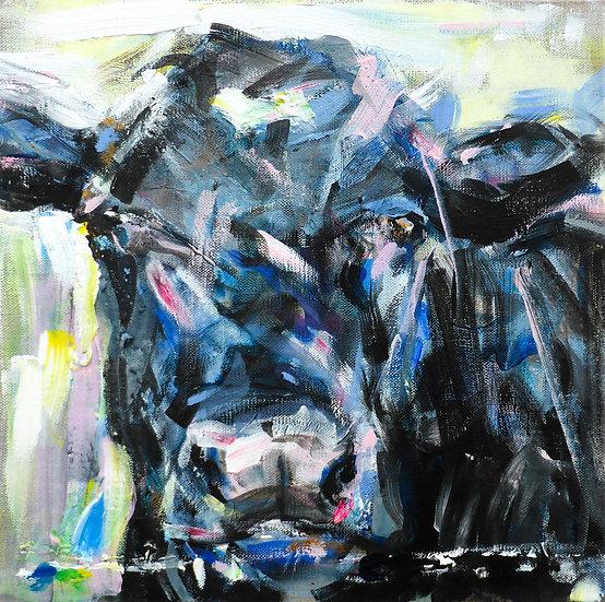 Ridge Cow 1