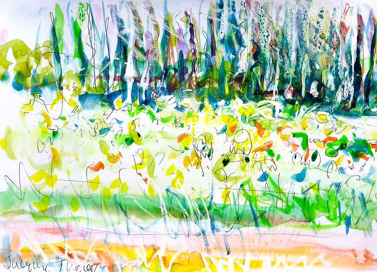 Sunflower Field near St Remy III