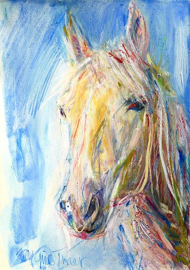 Horse Head IV