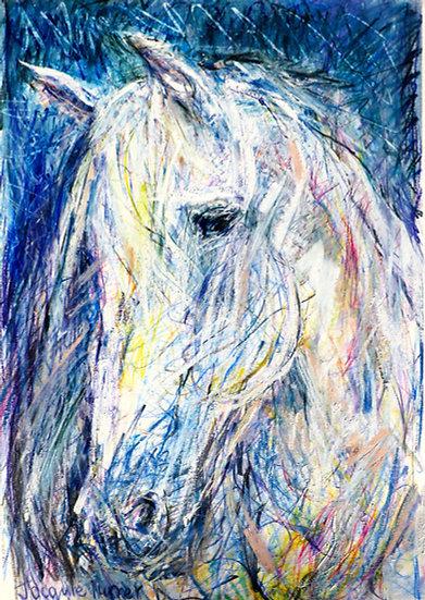 HorseHead II