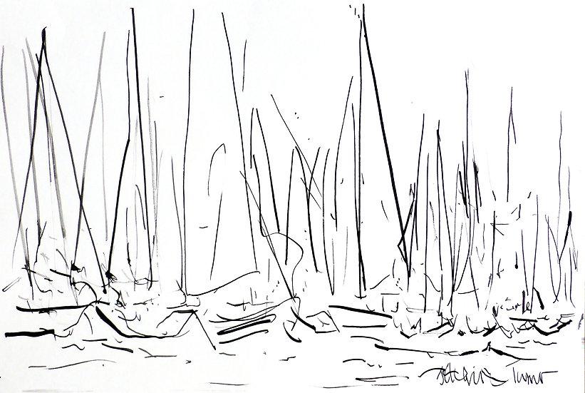 Start Line (White Sails) ink 2