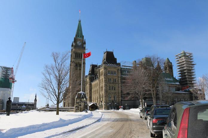 Parliament TR flag1.jpg
