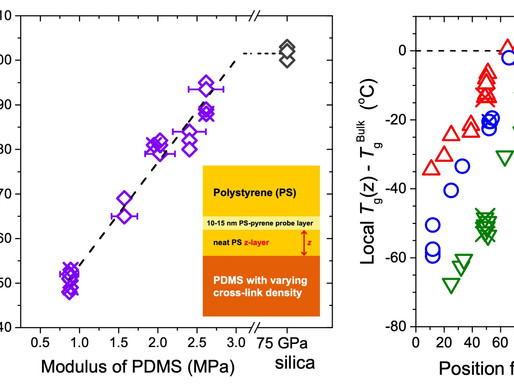 Modulus of Neighboring Rubbery Domain Strongly Impacts Local Glass Transition of Glassy Polymers